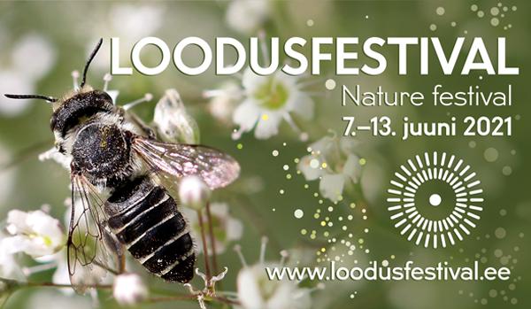 Loodusfestival: Pesakastide meisterdamise õpituba