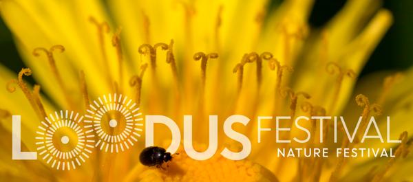 Loodusfestival: Linnulauluhommik Toomemäel