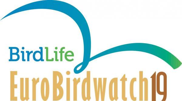 Rahvusvahelised linnuvaatluspäevad EuroBirdWatch