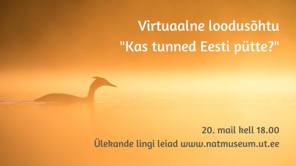 Virtuaalne loodusõhtu aasta linnust