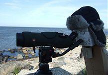 a serious birdwatcher - Timmy