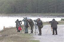 Soome linnuturistid